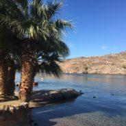 Campgrounds, campgrounds, campgrounds…